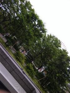 100527_162744.jpg